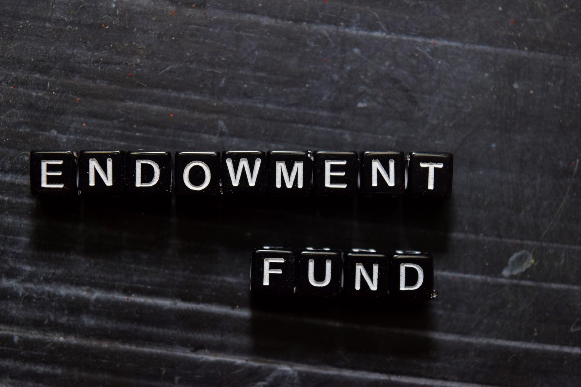 blocks saying endowment fund
